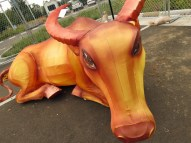 Chinese Lantern Ox - Looking for a Good Home