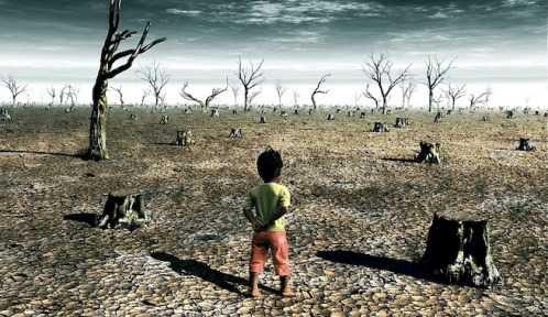 Como-evitar-cambio-climatico