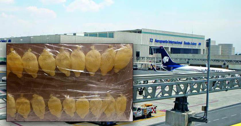 Detienen en AICM a peruano que transportaba cocaína en el estómago - Detienen en AICM a peruano que transportaba cocaína en el estómago