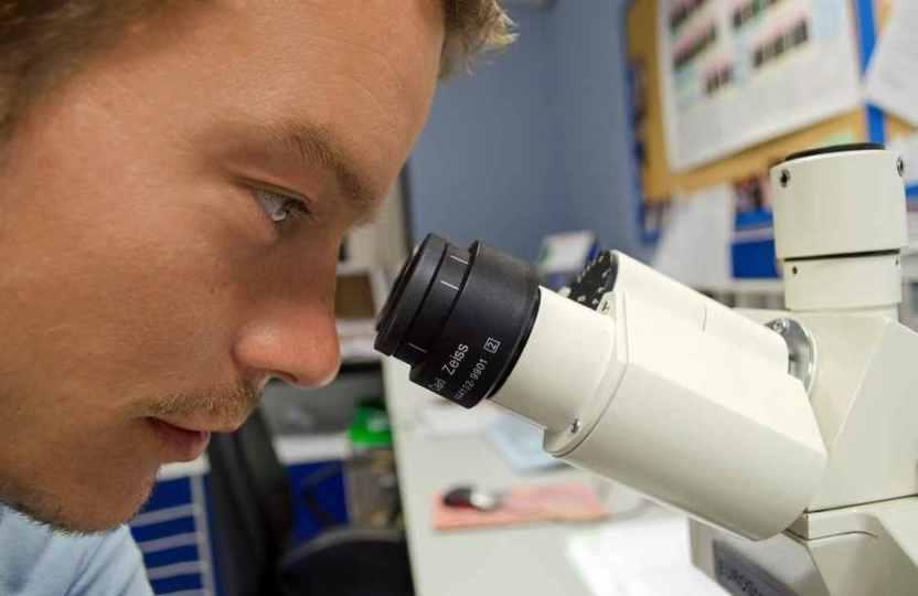 Científico Microscopio - Científicos israelíes imprimen primer corazón 3D con tejido humano