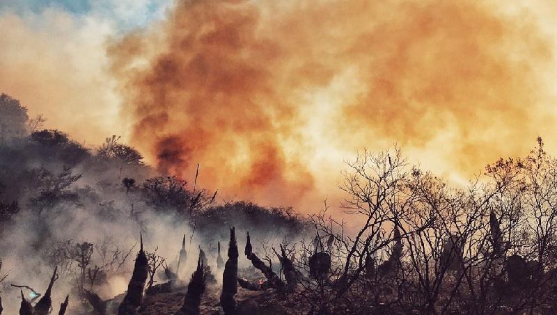 SLP - Piden a diputados defender Sierra de incendios por constructoras
