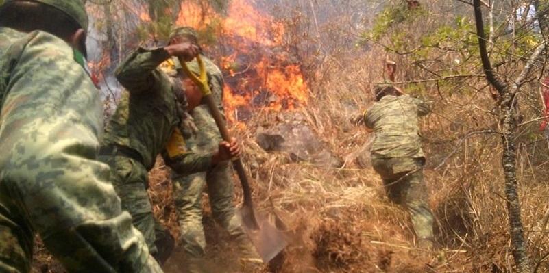 "ejercito - Ejército aplica Plan DN-III-E ""Fase Auxilio""por incendios forestales"