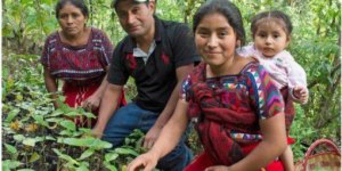 0624 POBREZA  300x150 - Plan Centroamericano para atender el campo y evitar migración forzada