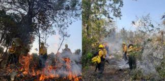 Continúan activos más de 50 incendios forestales en el país