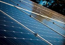 Instalarán paneles solares para la Central de Abasto
