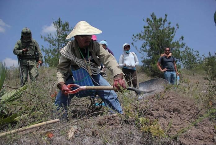 Colectivo encontró 13 fosas clandestinas con restos humanos en Guerrero