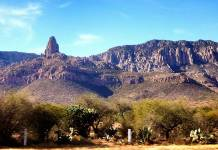 Inmobiliarias buscan adueñarse de áreas naturales protegidas en SLP