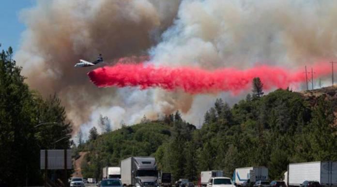 Ola de calor en Canadá provoca la muerte de al menos 500 personas