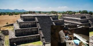 Descubren ramos de flores de hace mil 800 años en Teotihuacán