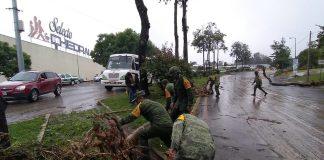 """24 municipios de Veracruz requieren atención urgente por los daños que dejó """"Grace"""""""