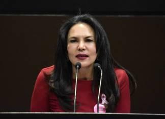 """Diputada del PAN llama """"hambriados"""" a legisladores de Morena y a AMLO"""