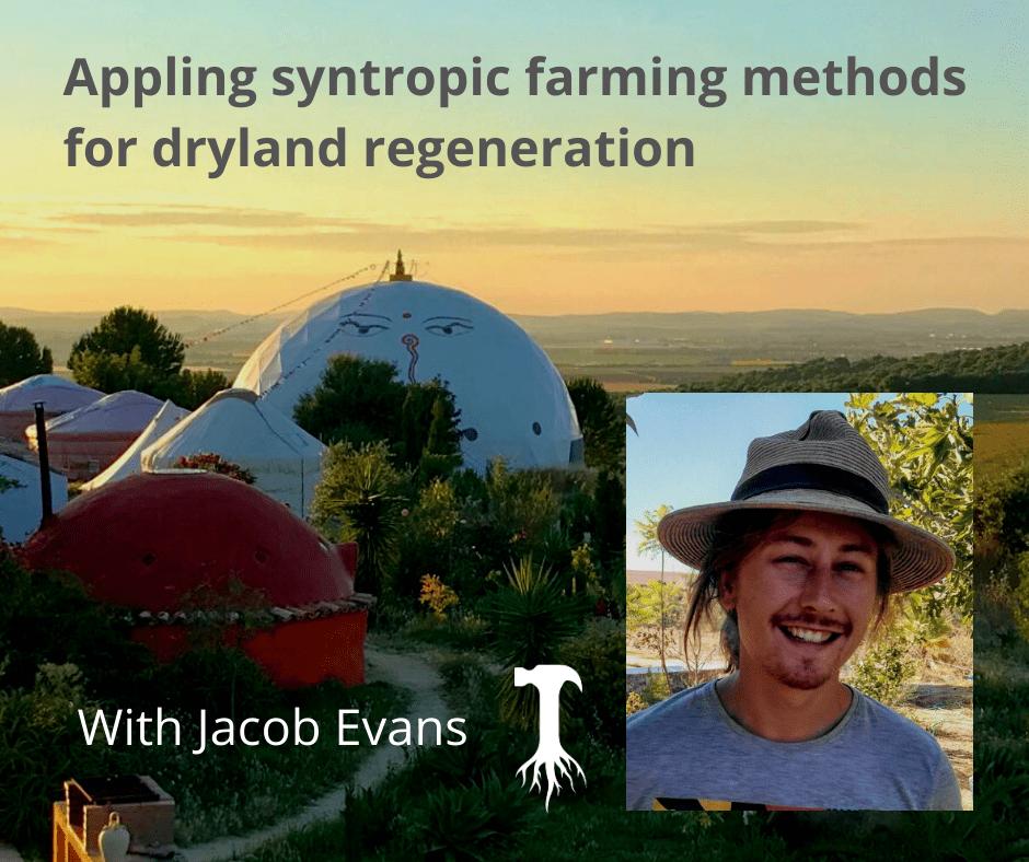 Applying syntropic farming methods for dryland regeneration, with Jacob Evans