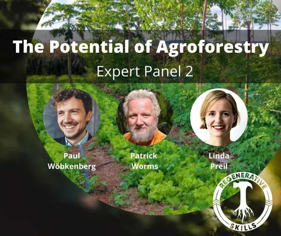 The potential of agroforestry: Expert panel 2