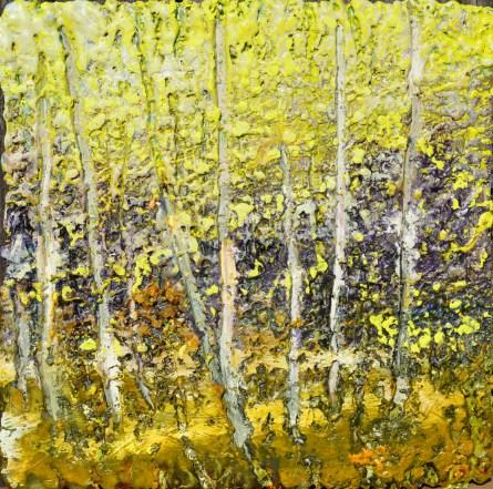 autumn-birches
