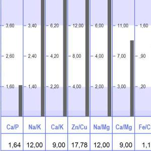 2.60  Cap  1,64  2.40  t. 40  Na,'K  12,00  - 4.20  Ca/K  9,00  - 8.00  - 4,00  Zn/Cu  17,78  4.02  Na/Mg  12,00  7.00  calMg  9,00  Fe/C  1,1