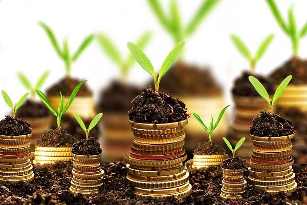 Como investir dinheiro com segurança e ter retorno rápido