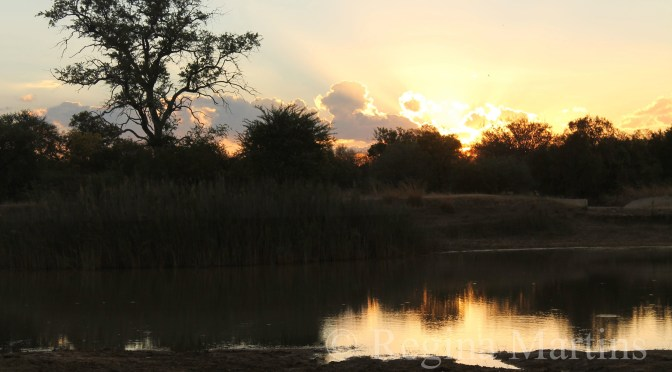 Serenity - An African Sunset