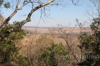 Magaliesberg,,South Africa - reginamartins.com