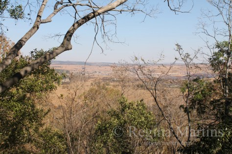 Magaliesberg,,South Africa - reginamartins.com