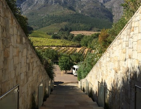 Cee's Which Way Challenge #34: In Franschoek