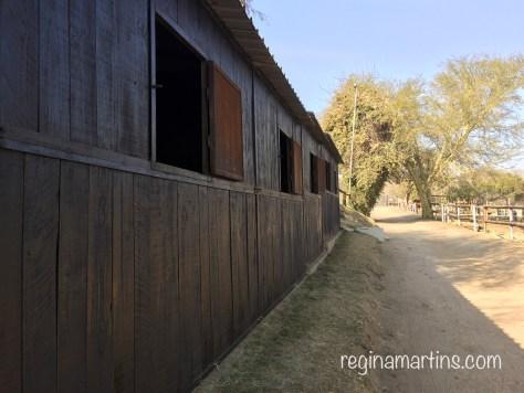 A long line of timber stables © Regina Martins