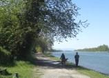 Uferweg Grand Canal d'Alsace, km 173,5 LU zu Tal