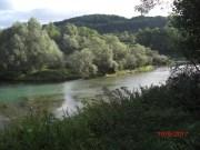 Altrhein Richtung Süden. Standort km 180.5 nördlich des Wasserkraftwerkes Kembs an der alten Unterwassereinmündung des Elsässerkanals.