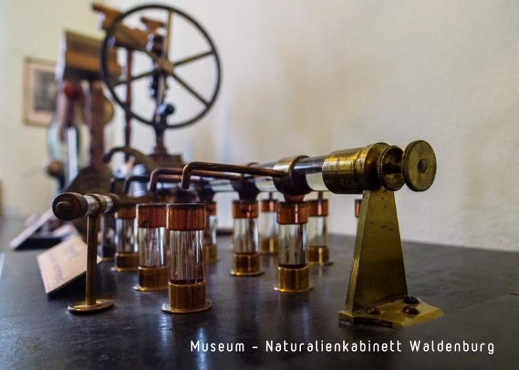 Naturalienkabinett in Waldenburg, 2018