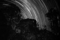 Star trails at Murrundindi