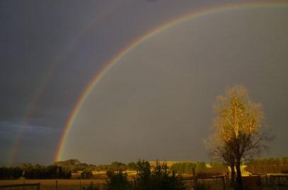 rainbow 2016 2