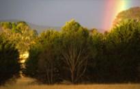 rainbow 2016 4