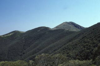 Approach to Mt Feathertop