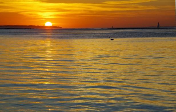 sunset apr 24 16 rosebud 2