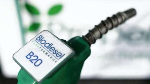 Save Money with Biodiesel