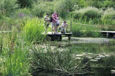 Filature de Belvès Jardin d'eau