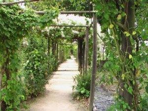 jardin prieuré locmaria