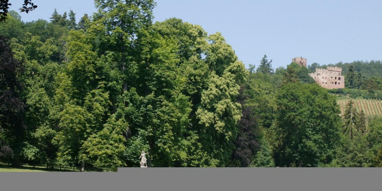 Parc des ruines du château de Kintzheim
