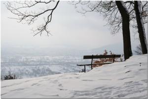 vue sur la plaine dalsace  view of alsace land 300x200 Alsace
