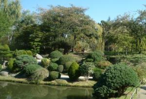 Jardin Japonais de Compans Cafarelli