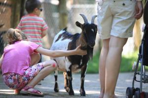 Parc zoologique et botanique de Mulhouse Zoo pour enfants