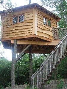 Le Cri de Tarzan Cabane Perchée
