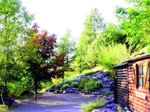 Arboretum de Roure