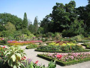 Parc de la Tête d'or Jardin botanique