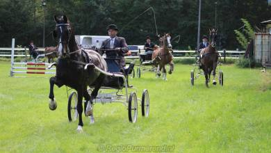 Photo of CONCOURS HIPPIQUE PURMEREND