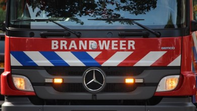 Photo of Trailer met paard te water in Middenbeemster (video)