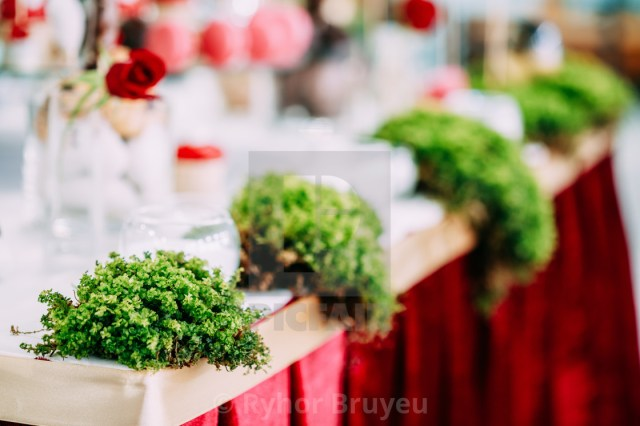Bar Wedding Decor Decoration Decorative Grass In Candy Bar On Table Wedding Decor