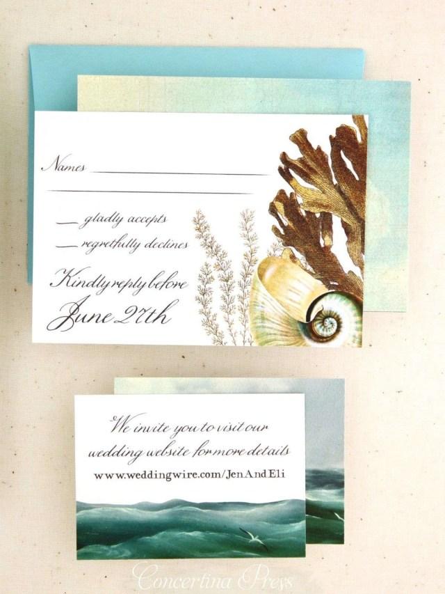 Seashell Wedding Invitations 25 Cruise Wedding Invitations Hazlittvintagerental