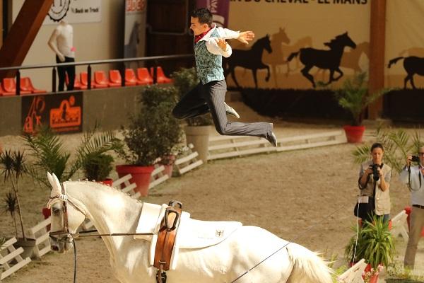13-07-19 Voltige Équestre championnat de France à la Boulerie Jump N° 7