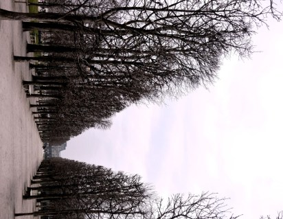 The lines were so crisp in Paris!
