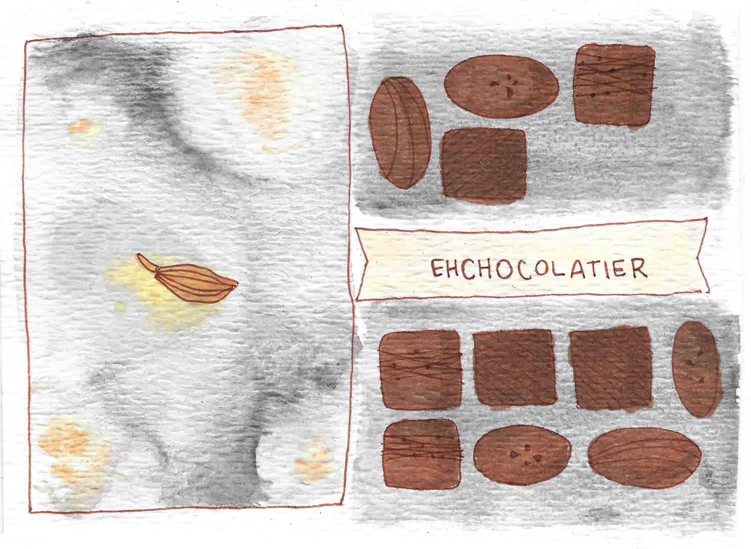 EHChocolatier is a new local chocolate and candy shop in Huron Village.